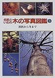 名前といわれ 木の写真図鑑〈3〉初秋から冬まで
