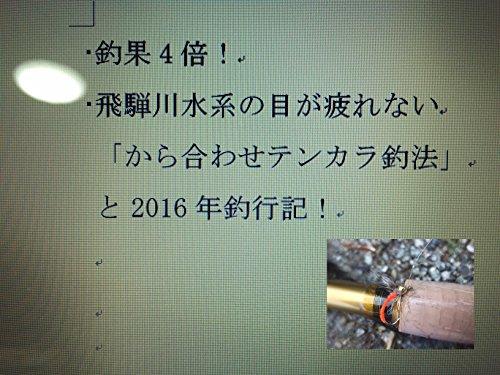 2016年 飛騨川水系 の 目が疲れない から合わせテンカラ釣法 と 釣行記!の詳細を見る