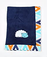 Bacati - Tribal/Aztec Plush Embroidered 30 x 40 inches Baby Blanket (Aqua/Navy Hedgehog) [並行輸入品]