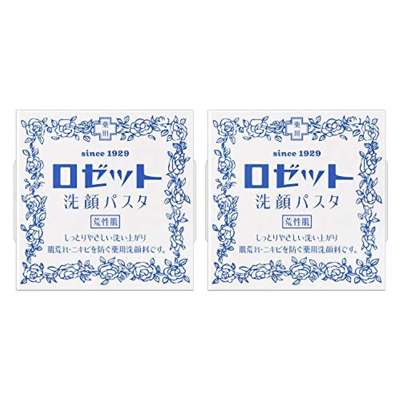 優勢液化する文房具ロゼット洗顔パスタ 荒性肌 90g×2個パック (医薬部外品)