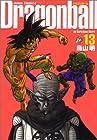 ドラゴンボール 完全版 第13巻