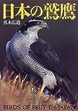 日本の鷲鷹 画像