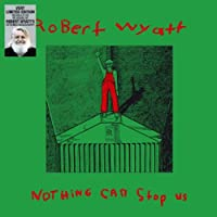 Nothing Can Stop Us Now [12 inch Analog]
