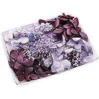 アメジストパープル花材セット 手芸クラフト ハーバリウム花材 アロマワックスサシェ プリザーブドフラワー アジサイ カス…