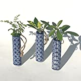 ハイドロカルチャー 観葉植物 和風一輪挿し3個セット