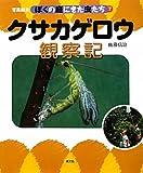 クサカゲロウ観察記 (写真絵本 ぼくの庭にきた虫たち)