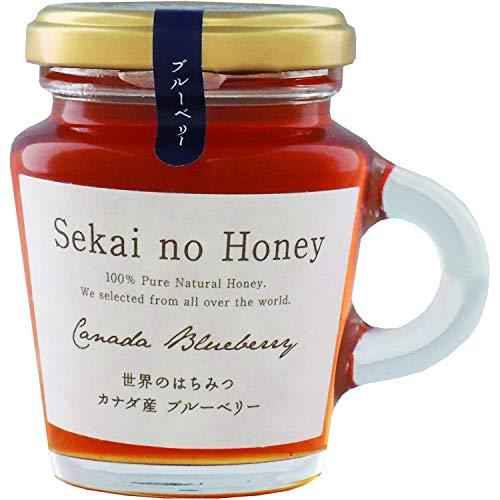 みつばちの詩工房 カナダ産ブルーベリー蜂蜜 130g