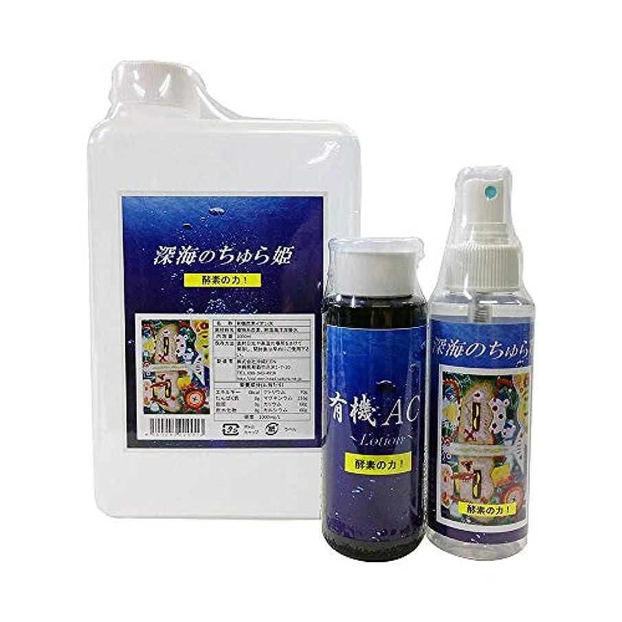 良心影響力のある本土全身パック 3点セット (詰替え用1Lボトル + ローション + スプレー100ml) 沖縄EEN 有機質炭素を配合した化粧水?ローションのセット