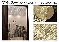 のれん 幅85cm×丈210cm ストリングカーテン ひもスクリーン ひも暖簾 スクリーンカーテン (アイボリーD<B タイプ>)