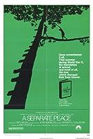 個別の平和ポスター映画27x 40インチ–69cm x 102cm ) ( 1972年)