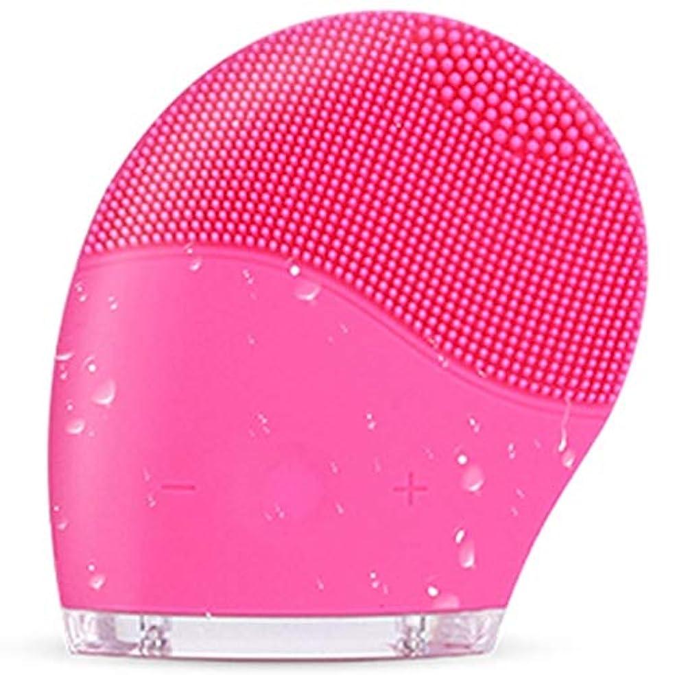お手入れ解き明かすランデブーすべての肌タイプのディープクレンジング、スクラブ、およびにきびを減らすためのシリコンフェイスクレンジングブラシ、防水アンチエイジング超音波フェイシャルブラシ、ディープエクスフォリエーターメイクアップツール (Color...