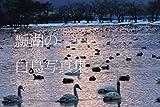 瓢湖 白鳥写真集: 白鳥を求めて (渡邊正敬ブックス)
