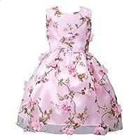 ウェディングブライズメイドドレス、balakieガールズノースリーブ花プリンセスフォーマルミスコンテストHolidayドレス 6T ピンク BK-15989
