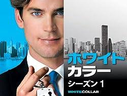 ホワイトカラー シーズン1 (字幕版)