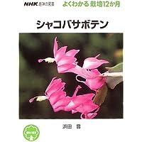 シャコバサボテン (NHK趣味の園芸 よくわかる栽培12か月)