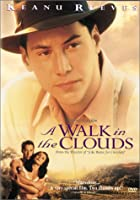 A Walk in the Clouds [Import USA Zone 1]