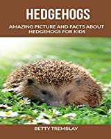 Hedgehogs: Amazing Picture and Facts About Hedgehogs for kids