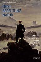 Geist, Bedeutung, Natur: Eine Kritik naturalistischer Theorien begrifflichen Gehaltes