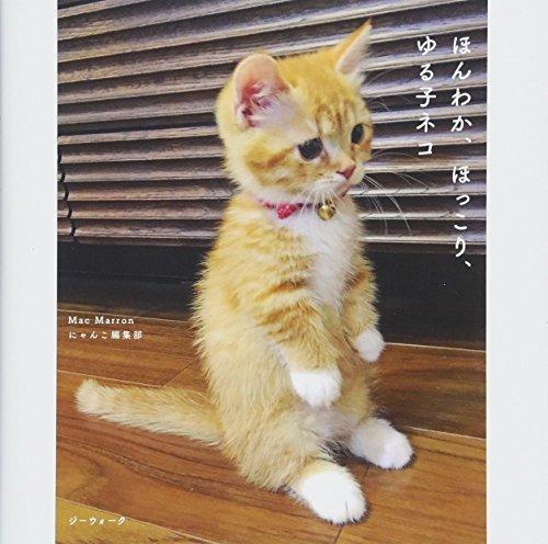 ほんわか、ほっこり、ゆる子ネコ (写真集)