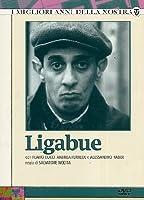 Ligabue (3 Dvd) [Italian Edition]
