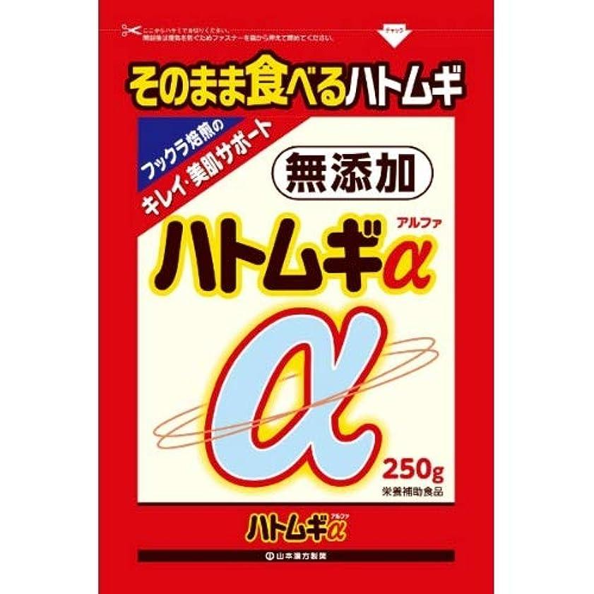 ぴかぴか砂利ホール山本漢方製薬 ハトムギアルファ 250g