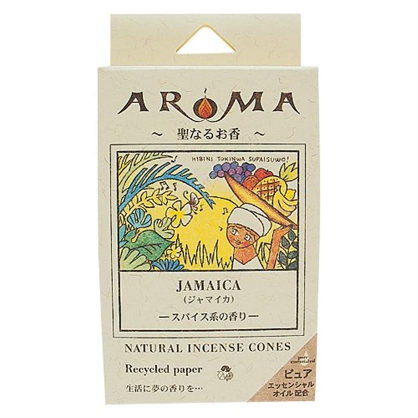 感性生じる滑り台アロマ香 ジャマイカ 16粒(コーンタイプインセンス 1粒の燃焼時間約20分 スパイス系の香り)