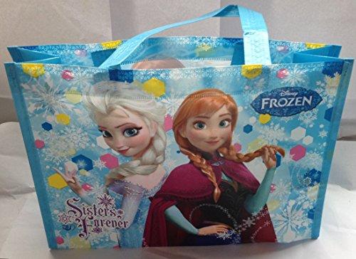 ディズニー アナと雪の女王 レッスンバッグ 2種類セット