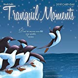 2016 Tranquil Moments by Christine Meighan Wall Calendar [並行輸入品]