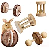 Aptech 5Pcs Hamster Chew Toys, Natural Wooden Chew Toys Pets Teeth Care Molar Ball for Small Animals Cat Rabbits Rat Guinea Pig