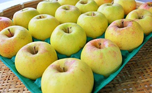 長野県産 生産農家直送りんご 「名月」 自家用ランク 10〜20玉 約5kg入り/箱 収穫&発送は11月中旬頃から順次開始予定!(熟度の進行具合により収穫時期は前後します)