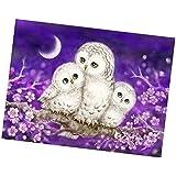 MagiDeal Diamond Embroidery Animal Owl 5D Diamond Painting Cross Stitch Needlework Crafts Christmas Gift
