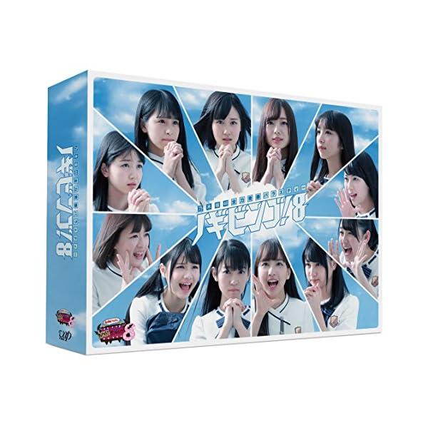 NOGIBINGO!8 DVD-BOXの商品画像