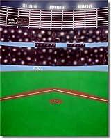 9' x10'野球Scenicモスリン背景背景幕