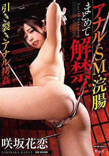 アナル・SM・浣腸まとめて解禁! 引き裂きアナル拷姦 ヴィ [DVD]