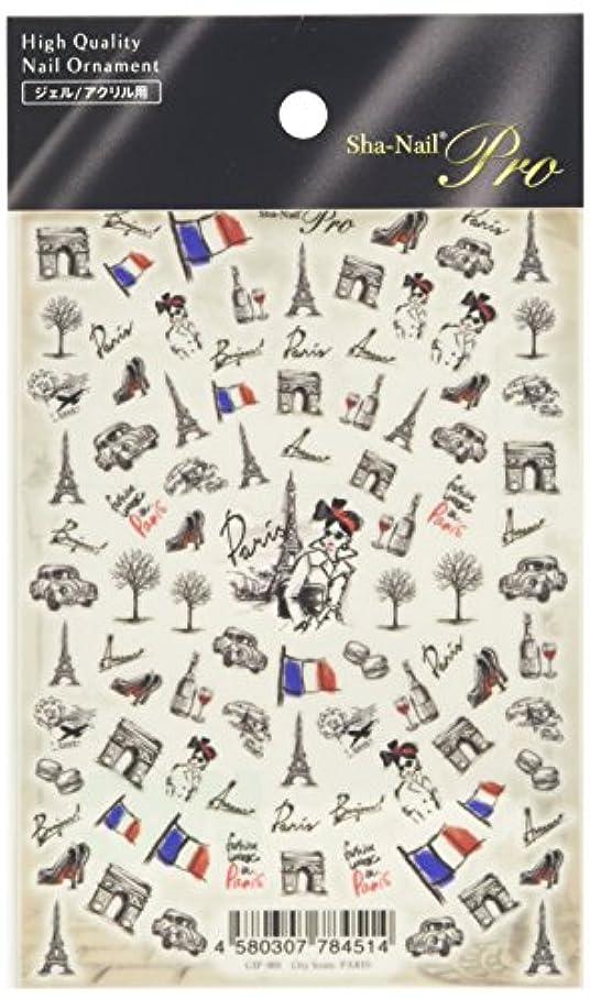 おんどりしたがってアーティファクト写ネイルプロ シティアイコンズ -パリ-