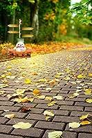 A MonamourアウトドアレンガパスRoad Fallen Leaf Fall SeasonツリーForest Nature Sceneryスタジオ写真の背景幕ビニール