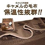 キャメル純毛毛布【京都西川の希少素材キャメル100%毛布】【シングルサイズ140㎝x200㎝】【日本製】