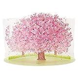 サンリオ 春カード ポップアップ 透明素材桜 P4314