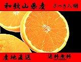 和歌山県産 さつき八朔 完熟で八朔とは思えない甘さ (10キロ)