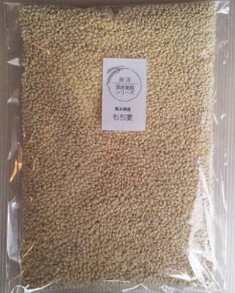 もち麦 国産 1kg 国産 愛情もち麦 もちむぎ H29年産...