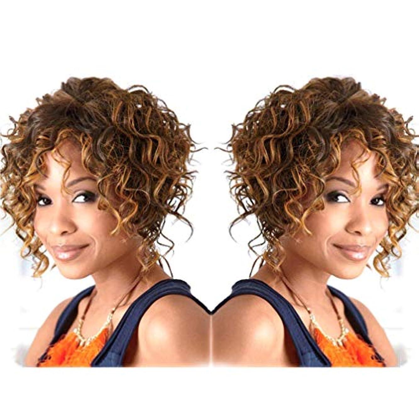 宣言するマットインスタント女性150%密度ウィッグ人毛ショートカーリーウィッグかわいいディンキーカーリーブラウン29cm