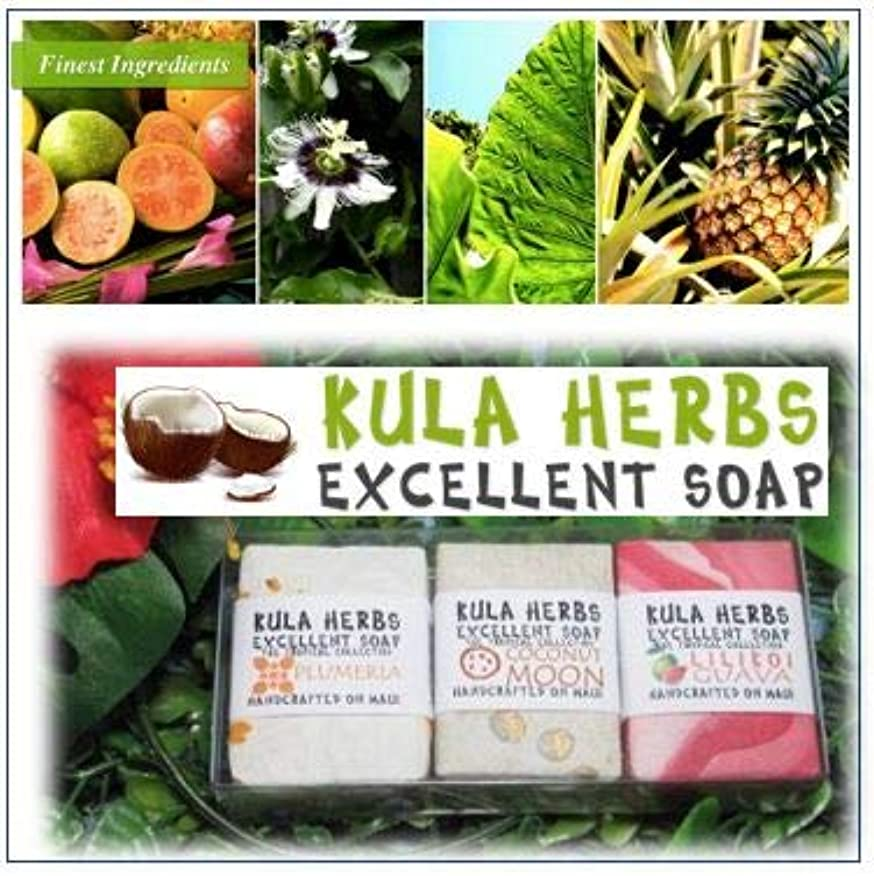 複合ピース影のあるハワイの香り?ナチュラルソープ【Kula Herbs excellet】