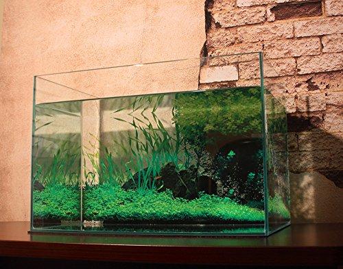 AQUAGraphiX 水槽バックスクリーン AG-001 水草 60cm用