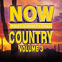 Vol. 3-Now That's What I Call Country