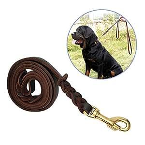 Focuspet 犬 リード 皮革リード 長さ1.7m 小型 中型 大型 犬用リード 滑り止め 本革 散歩用 丈夫 ブラウン 高品質 高級 ペット用品