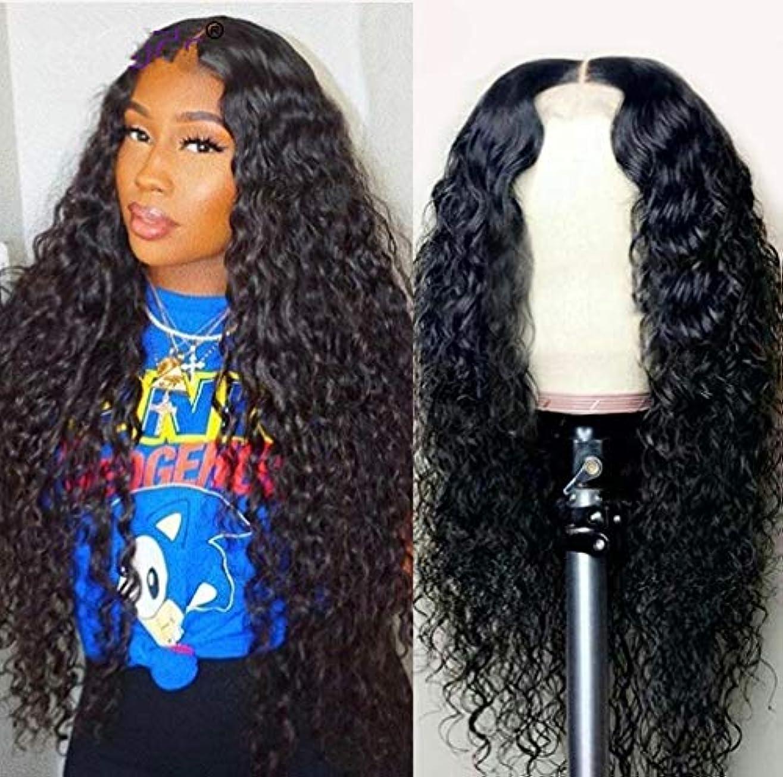 格納逆説ソフトウェア女性のかつらフロントレース耐熱合成人工毛側部分の長い巻き毛のかつら150%密度