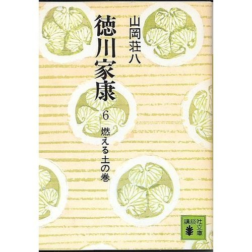 徳川家康 6 燃える土の巻 (講談社文庫 や 1-6)の詳細を見る