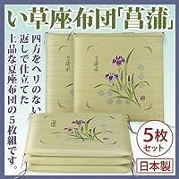 い草座布団「菖蒲」5枚組