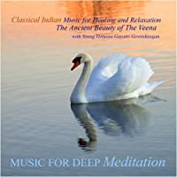 Classical Indian Music for Healing and Relaxation - The Ancient Beauty of the Veena【CD】 [並行輸入品]