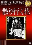散り行く花【淀川長治解説映像付き】[DVD]
